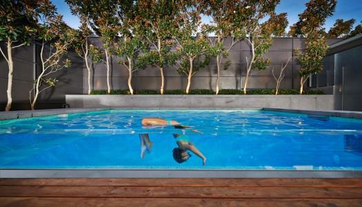 Pool Dreams Come True