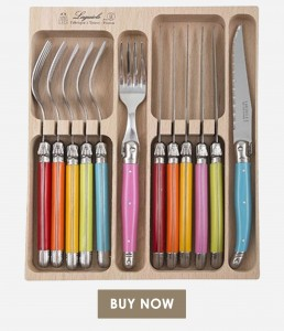 Laguiole Andre Verdier Debutant Cutlery Set Multicoloured Spring